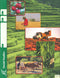 Cover Image for Social Studies Keys 67-69 - 4th Ed