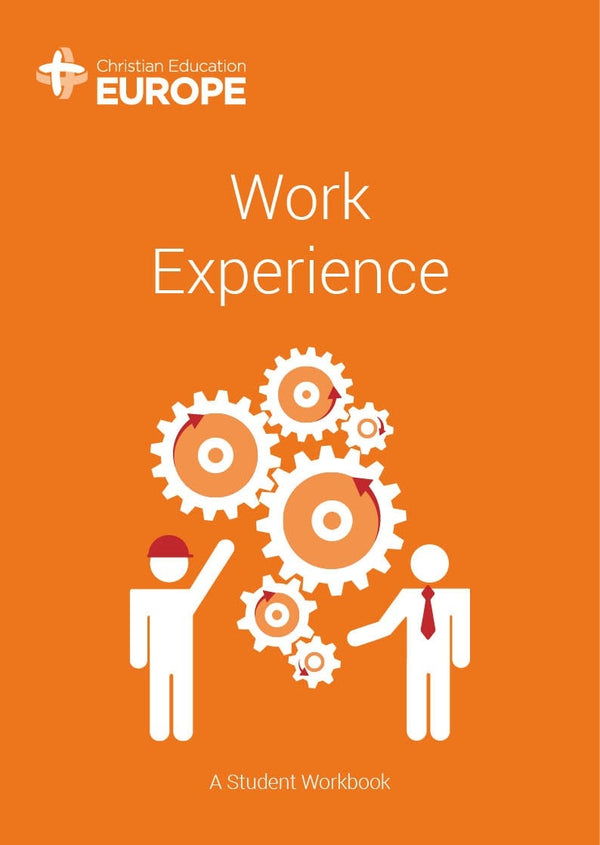 Cover Image for Work Experience