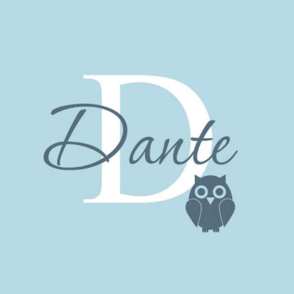 designyours Personalized Name Wall Decals for Boys Cute Owl Custom Initials Wall Stickers Baby Nursery Wall Stickers Baby Shower Wall Decor