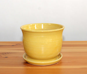 Yellow 5 inch Planter