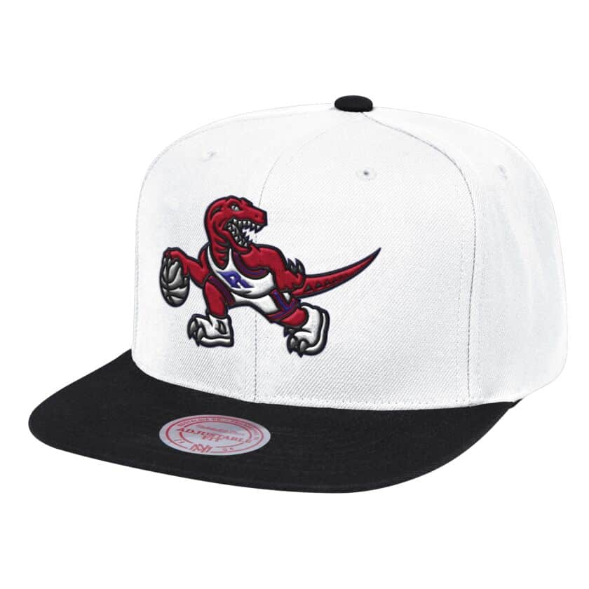 Raptors Fresh Crown Snapback