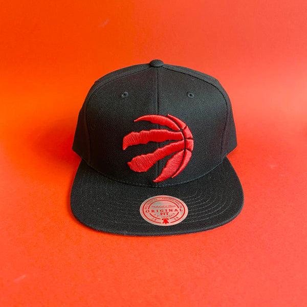 Raptors Team Ground Snapback