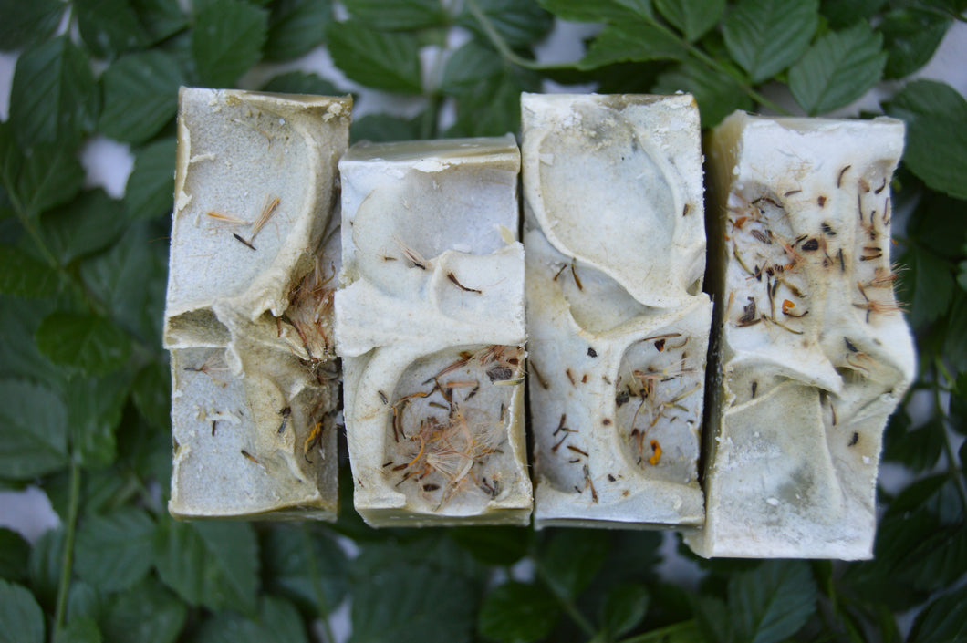 Herbal Swell Soap (with arnica and menthol)