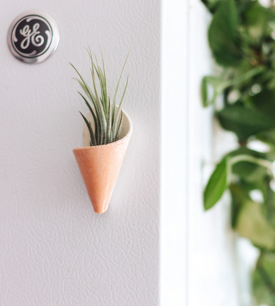 Magnetic Planter
