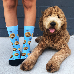 The Story Behind Our Dog Socks