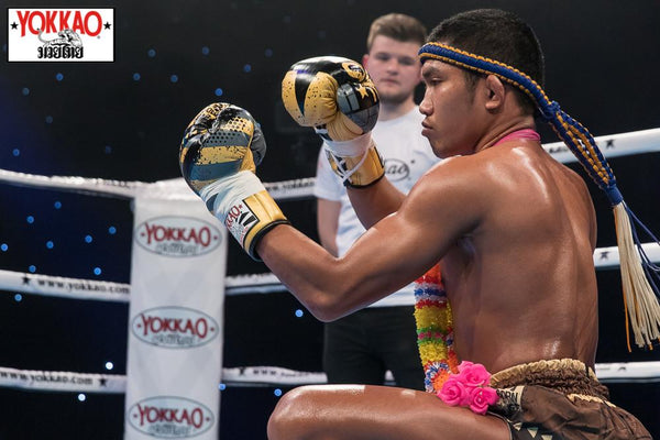 BREAKING: Superbank to Headline YOKKAO 40 in Sydney!