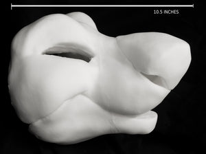 Manokit soft foam head base for costumes, mascots and fursuits.