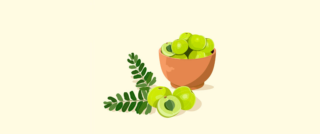 Amla for hair is one of the 12 essential Herbs for hair growth