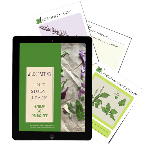 Wildcrafting & Foraging Unit Study 3 Pack