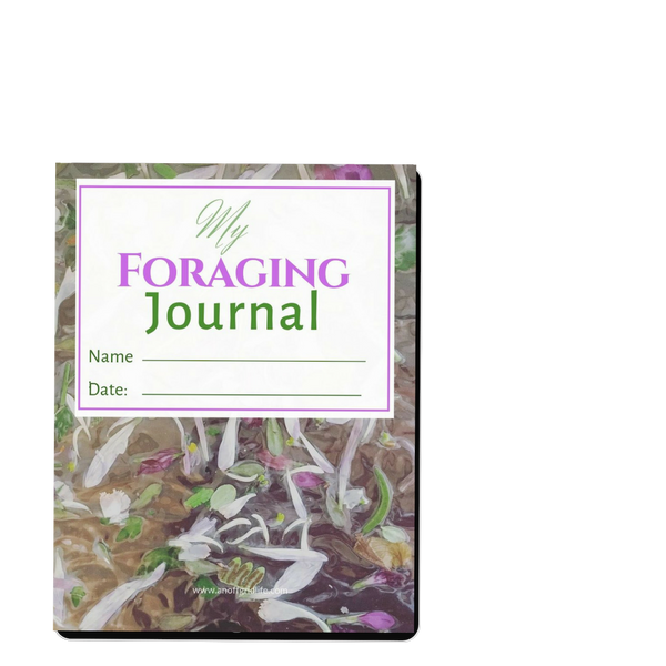 Foraging Journal #2 from An Off Grid Life