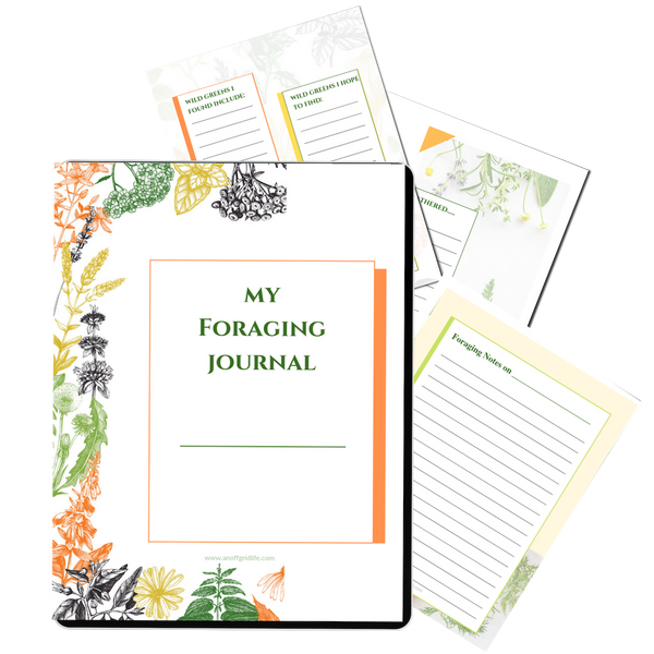 Foraging Journal #3