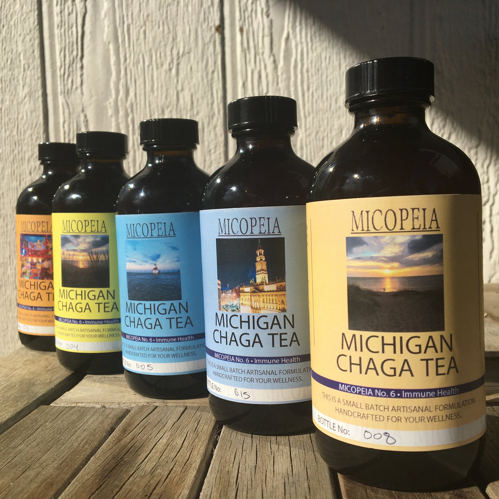 MICHIGAN CHAGA TEA - 8 fl oz