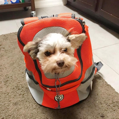 Backpack for Dogs/Cats
