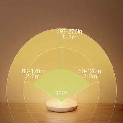 Intelligent human induction LED night light