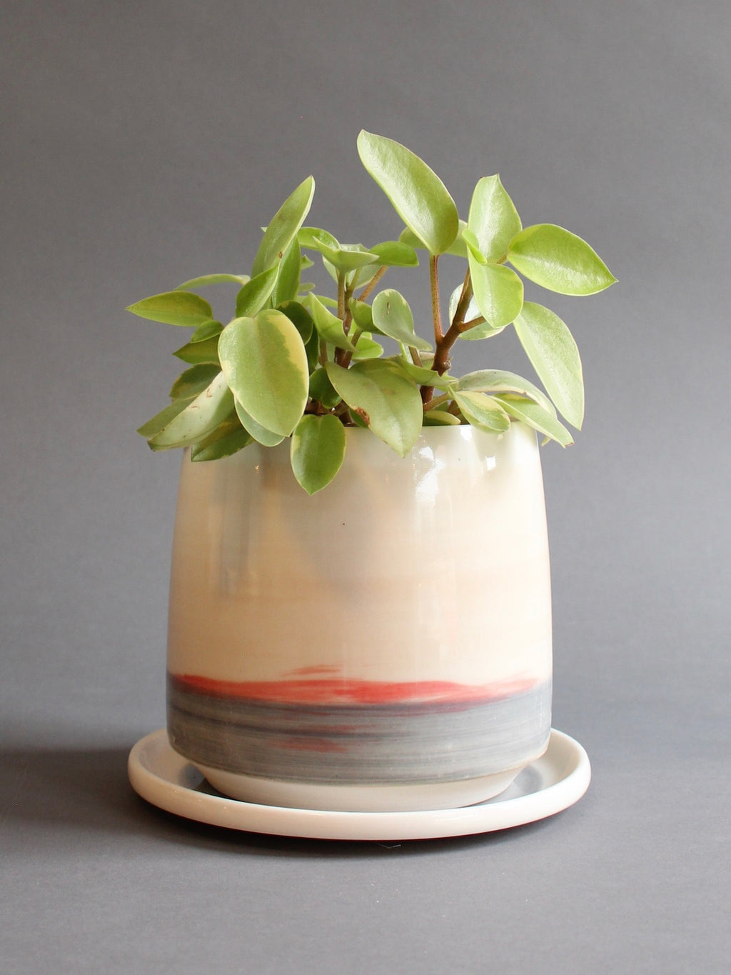 Medium Planter with Saucer - Sunset
