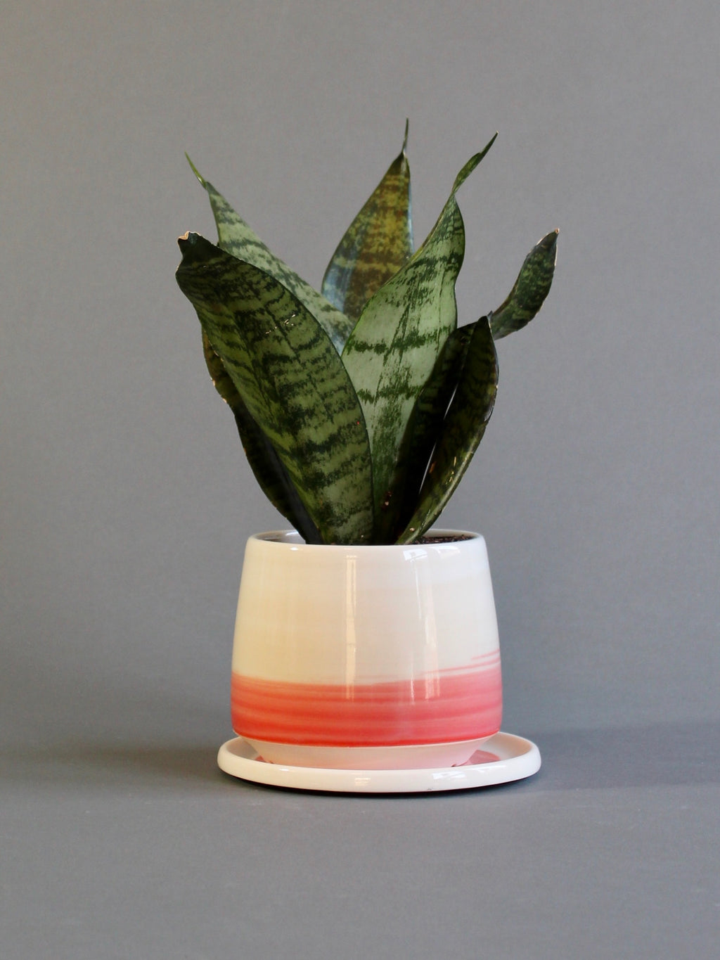 Small Planter with Saucer - Coral