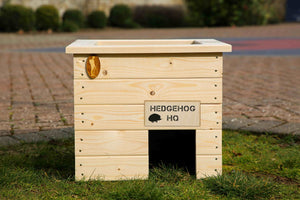 'Hedgehog Headquarters' Hedgehog House and Planter