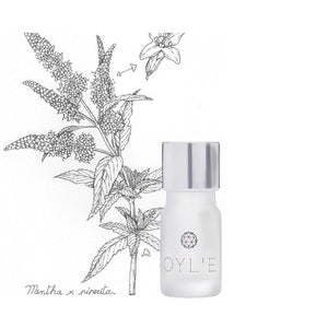 Peppermint Essential Oil - Pure - OYL'E Aromatherapy Jewellery