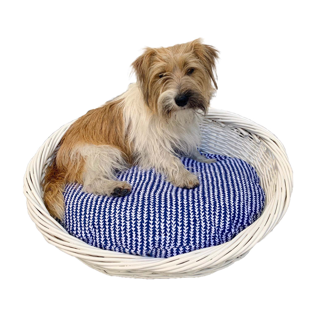 Small Bundle - Caper with Bailey Cushion Cover + White Basket