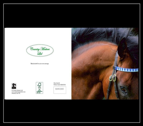 Dalawi Stallion Greeting Card - Country Matters