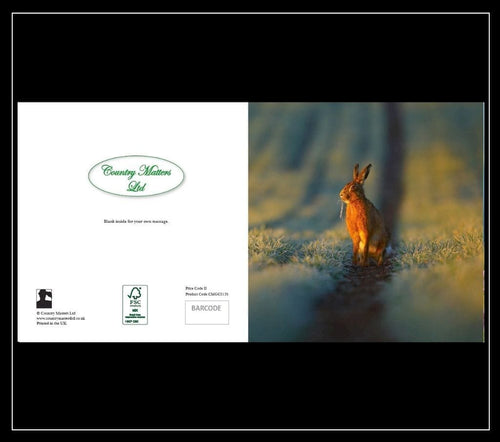Hare Greetings Card - Country Matters