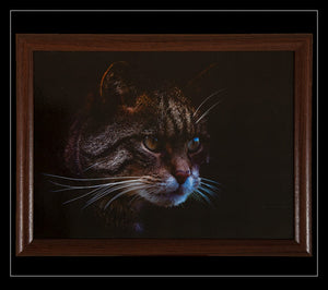 Stalking Cat Lap Tray - Country Matters