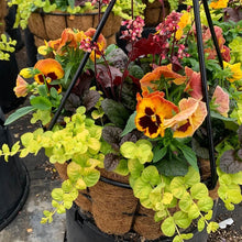 Load image into Gallery viewer, Fall Hanging Baskets