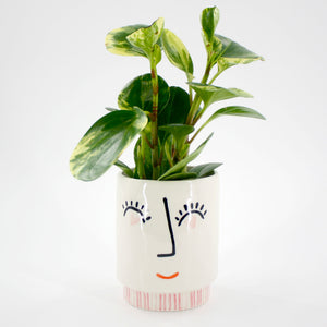 Face Planter with Heart Eyes