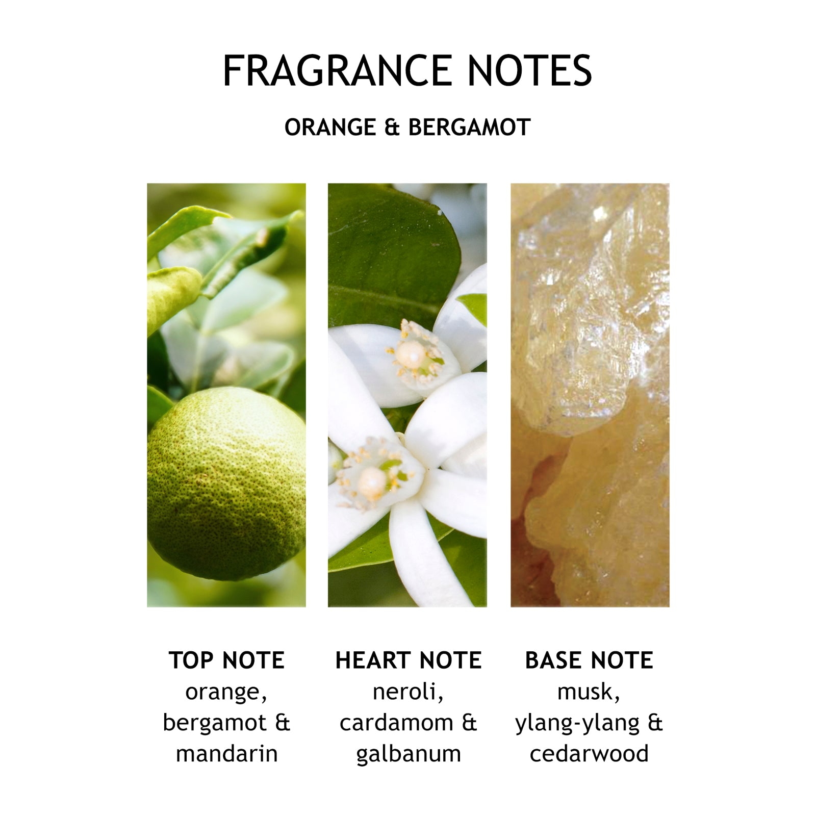 Molton Brown Orange and Bergamot Aroma Reeds 150ml