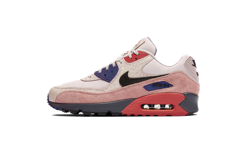 Nike Air Max 90 NRG Shoes