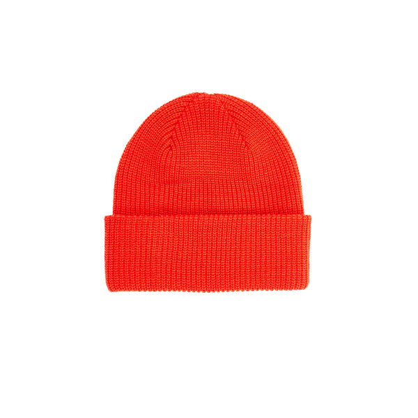 Pleasures Mens Dragon Beanie