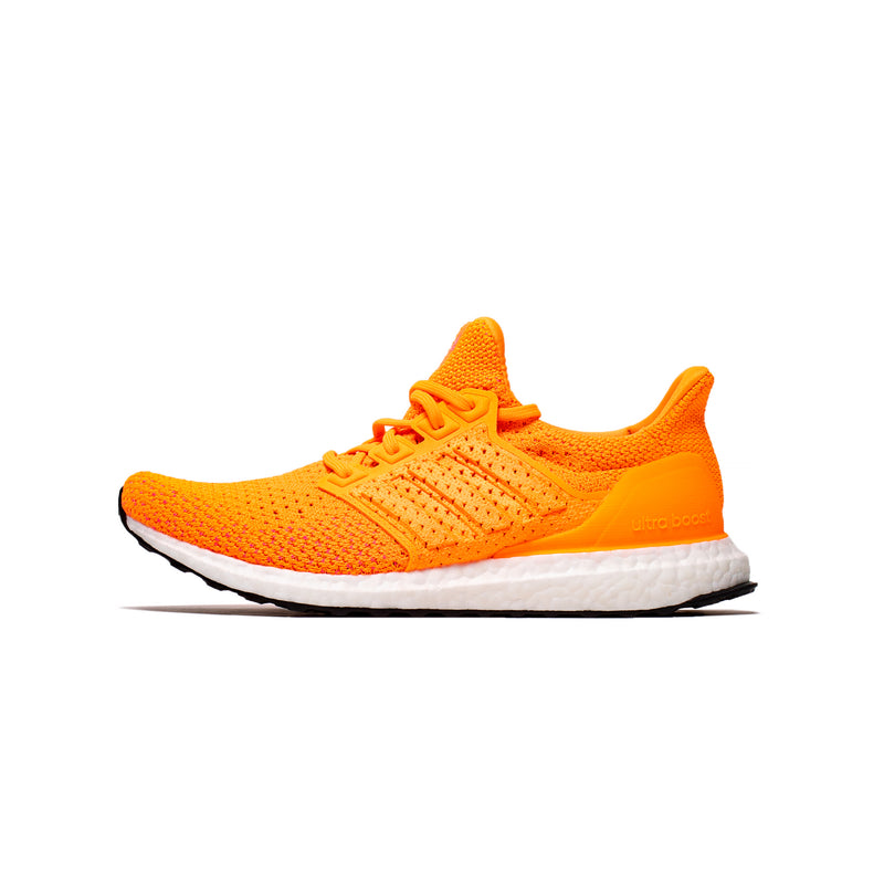 Adidas Mens Ultraboost Clima DNA Shoes