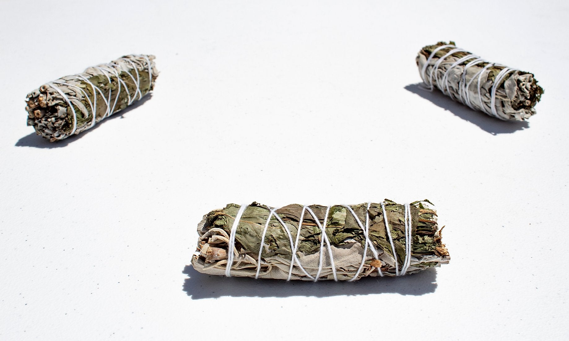 "White Sage & Peppermint Mix (3-4"") - Life Gardening Tools LLC"