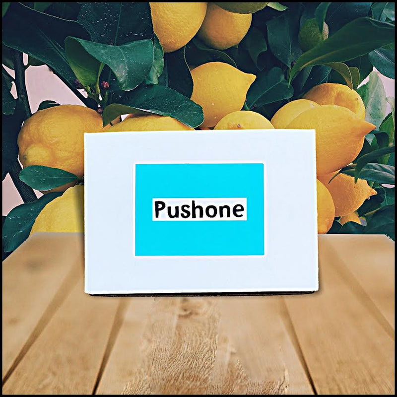 Pushone - Curated Fashion Lifestyle Bundle (Limited Time)