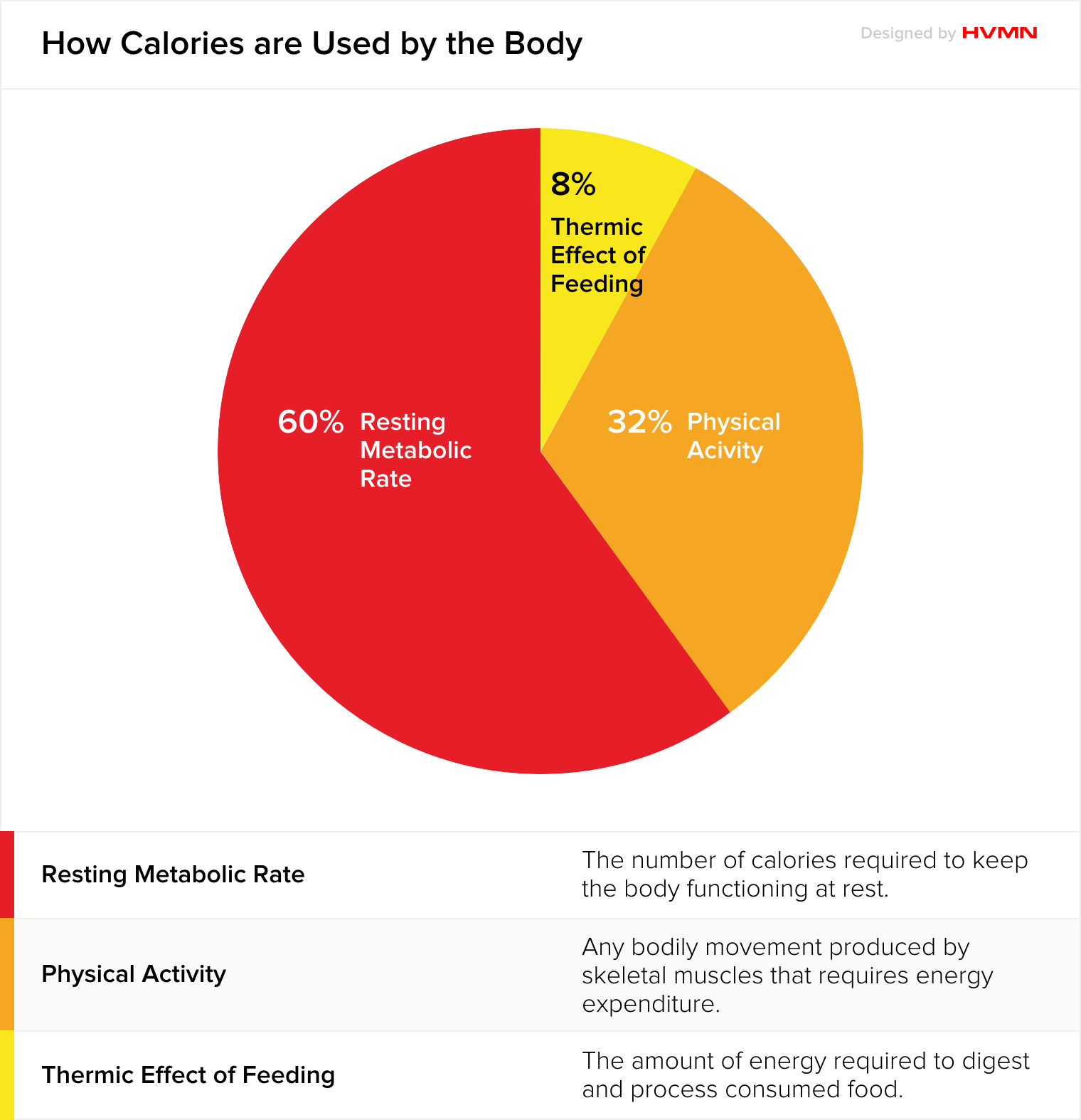 A pie chart showing how the body uses calories