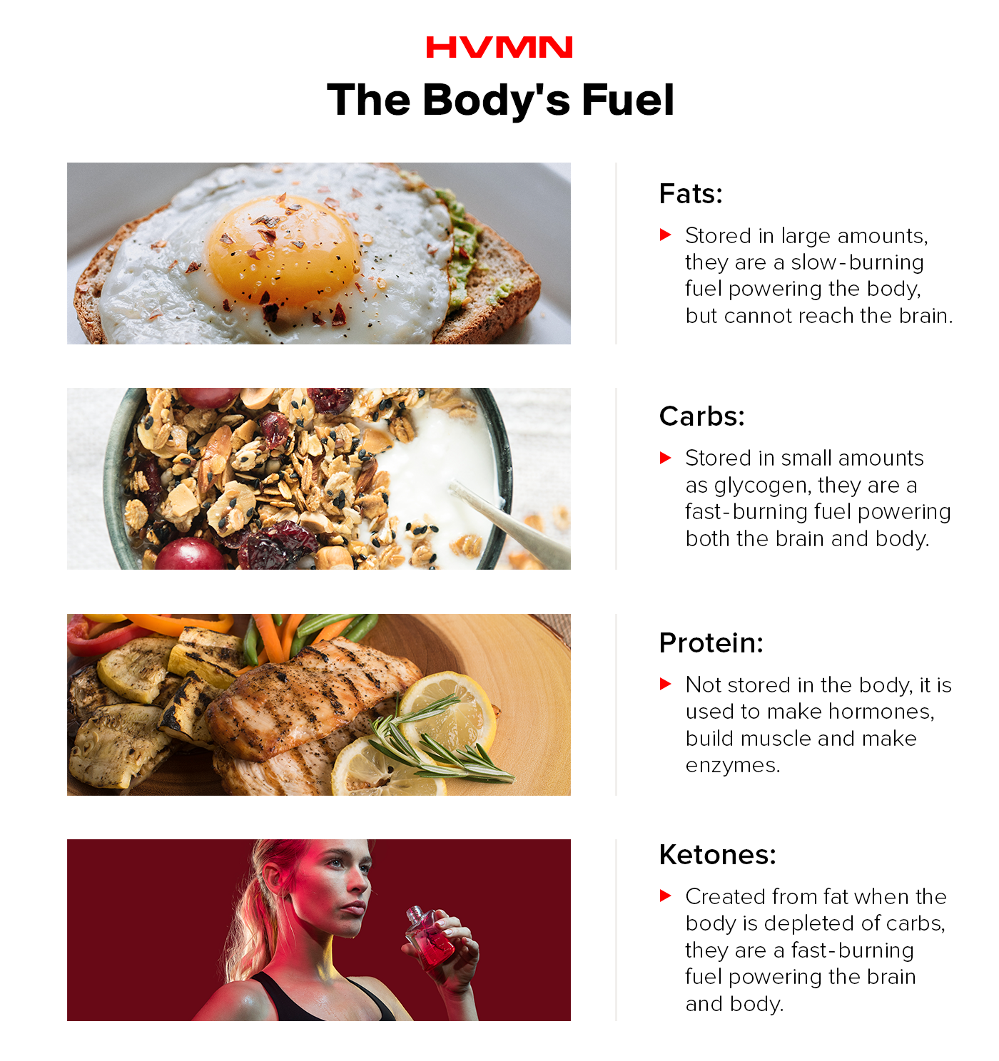 An image of an egg, granola, chicken and exogenous ketones to show the different ways the body uses fuel