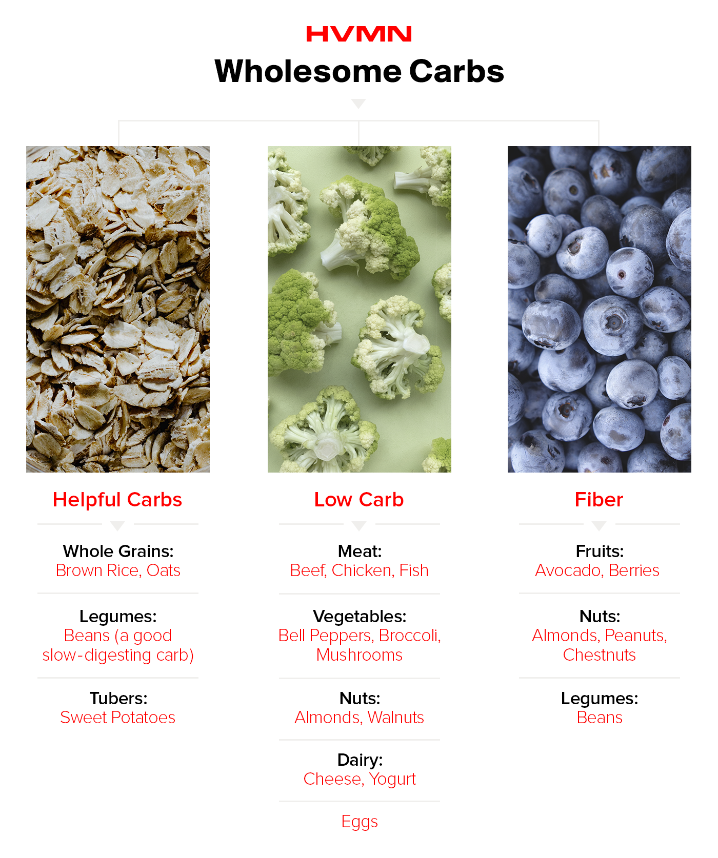 An image of oats, broccoli and blueberries showing helpful carbs, food low in carbs and foods with fiber