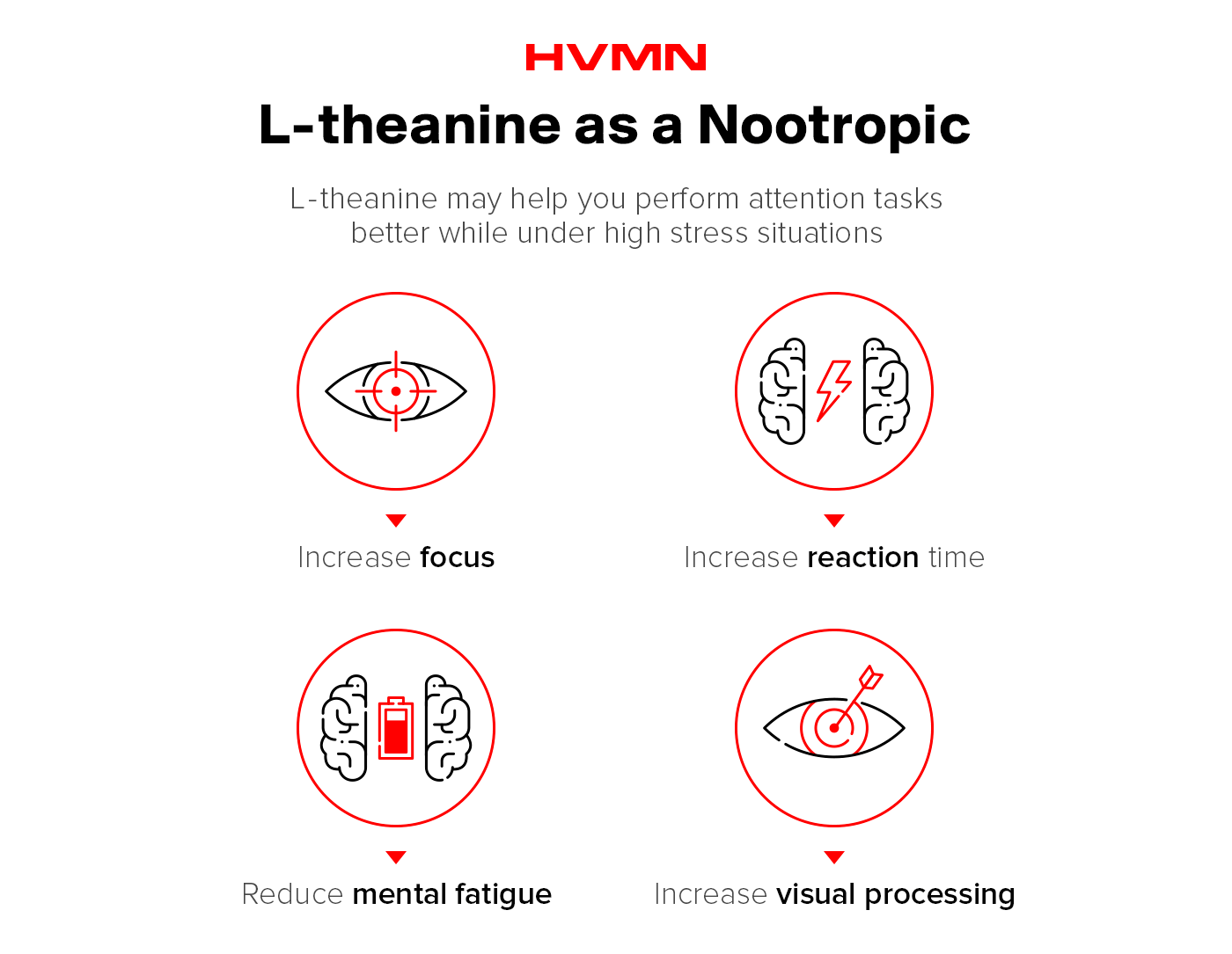 Four icons showing how l-theanine works as a nootropic: an eye, a brain with a lightning bolt, a brain with a battery, and an eye with an arrow.