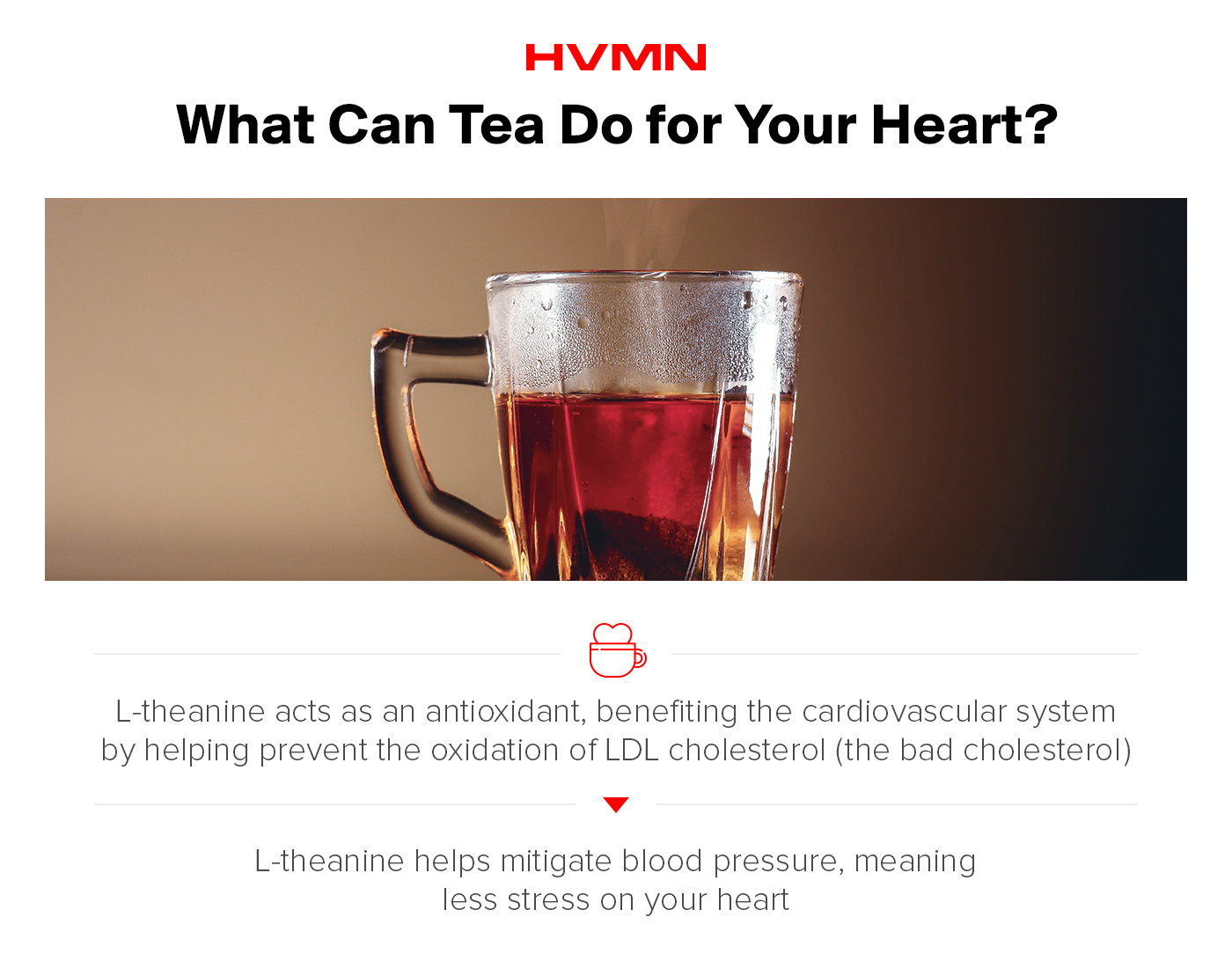 An image of black tea in a clear mug, showing how l-theanine in tea can help your cardiovascular system.