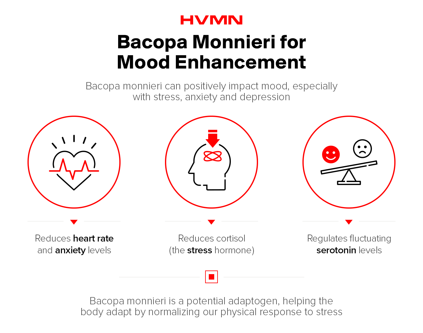 Three illustrations of a heart, a head and a scale with a happy and sad face, showing how bacopa can improve mood by decreasing stress and balancing serotonin levels