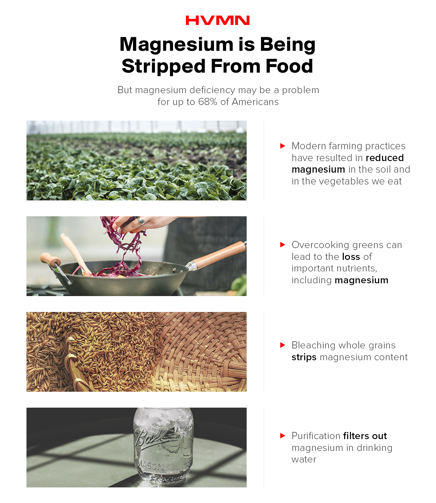 an image of a field, someone cooking, and a basket of grains showing that magnesium is being stripped from our food based on modern farming practices