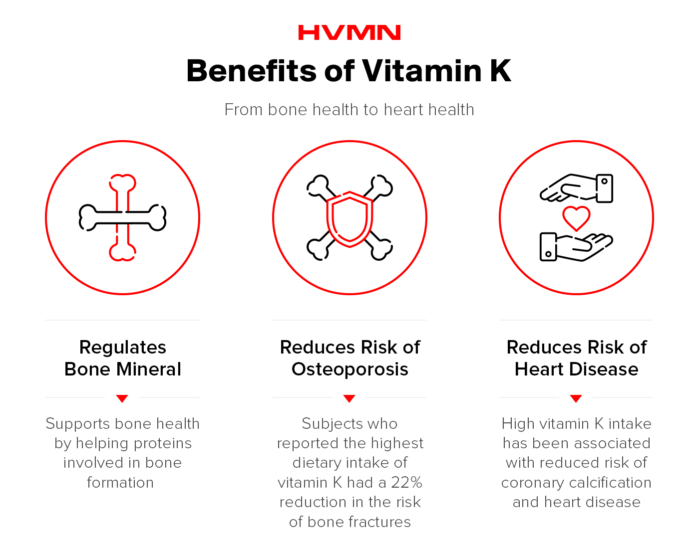 An illustration of bones, a shield and hands holding a heart showing all the benefits of vitamin K