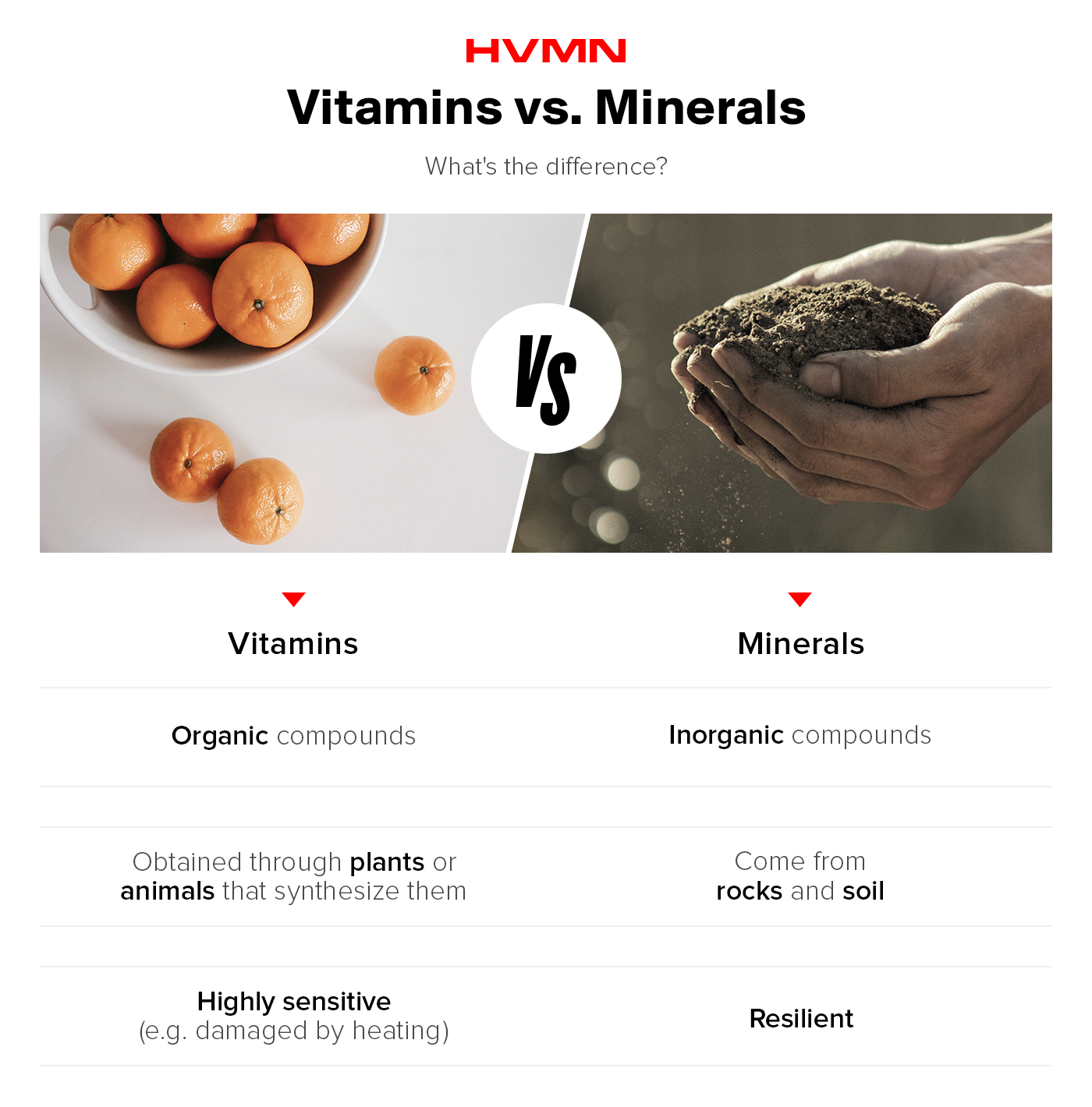 an image of oranges next to an image of soil in hands, showing the difference between vitamins and minerals