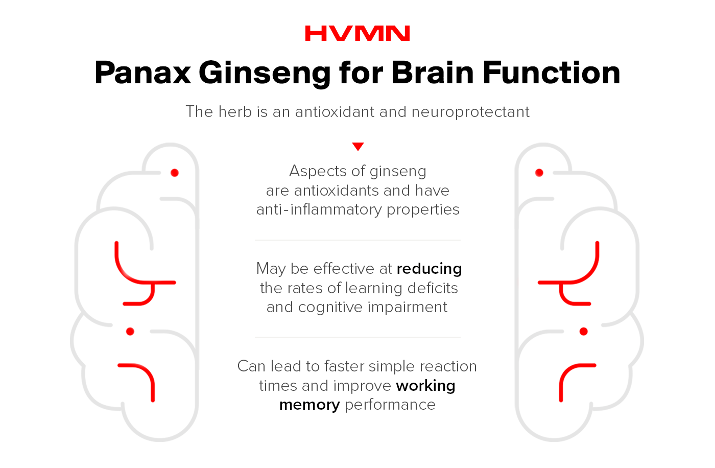An illustration of brain, split in half, with all the benefits of panax ginseng for brain function on the inside