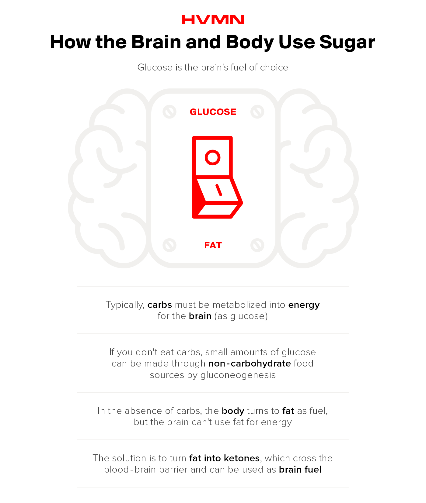 An illustration of a brain, separated by a light switch, showing how the brain and body use sugar