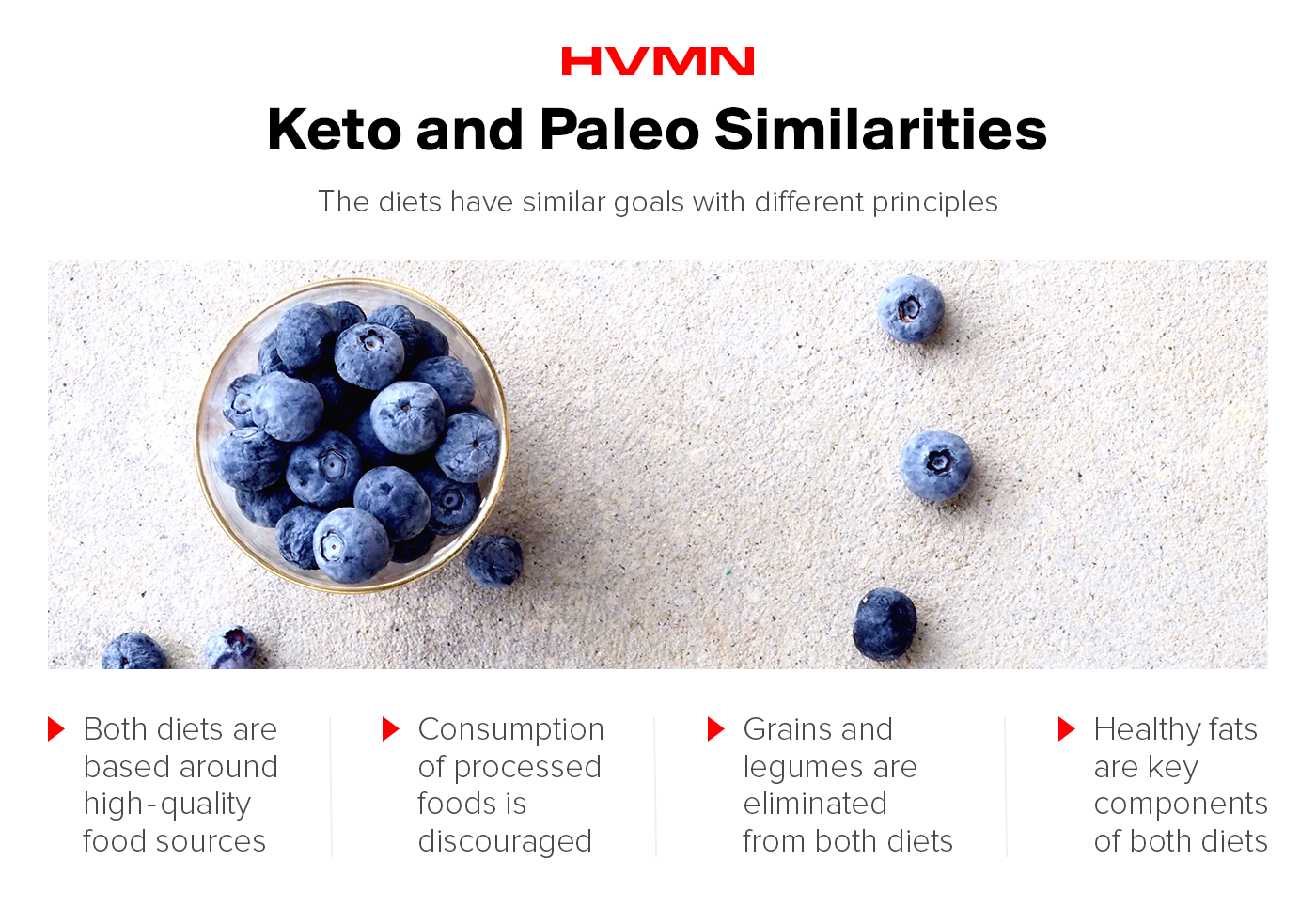 A bowl of blueberries showing the similarities between keto and paleo
