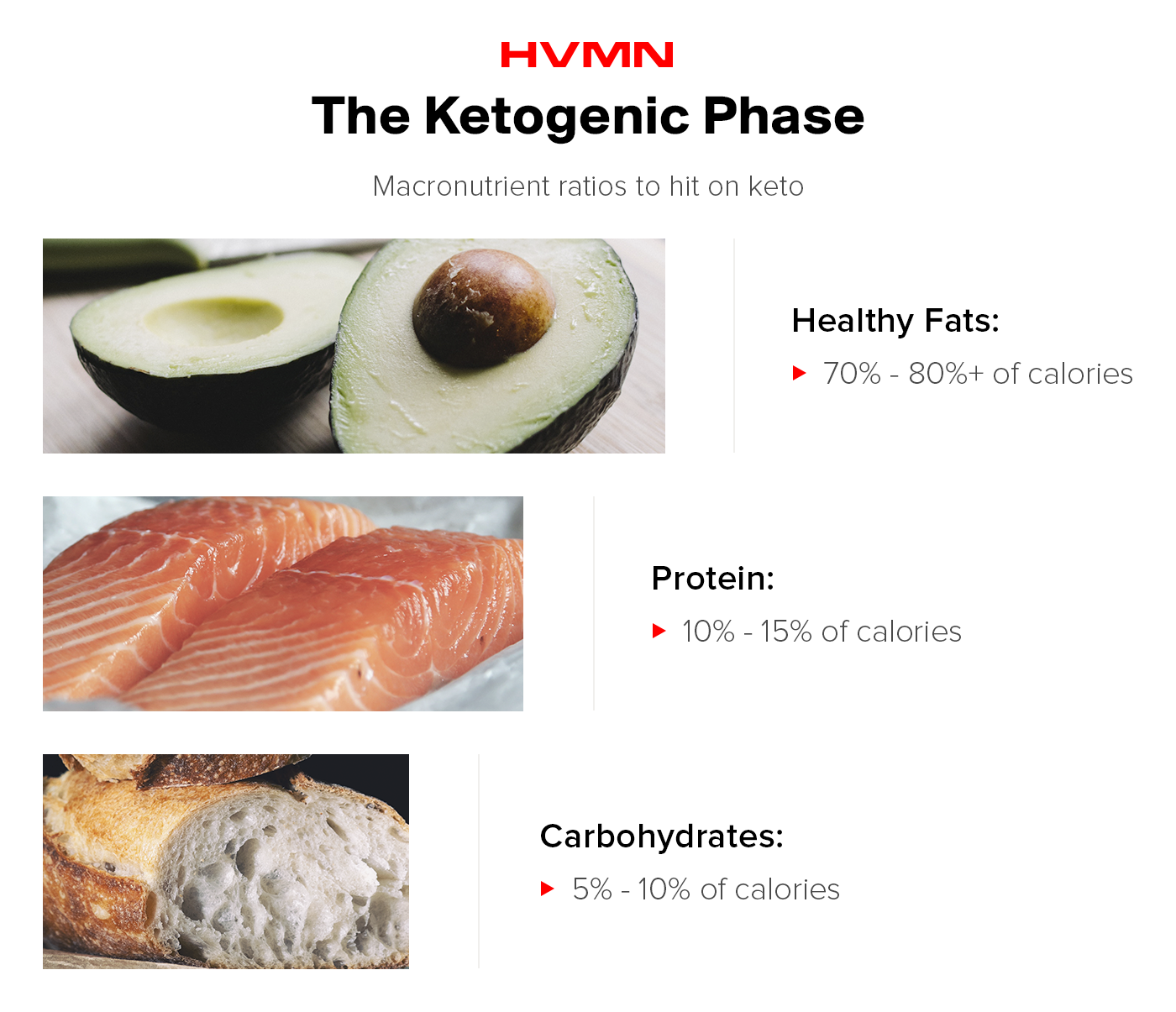 An image of an avocado, salmon and bread, showcasing the different macronutrient breakdowns for the keto phase of cyclical ketogenic dieting