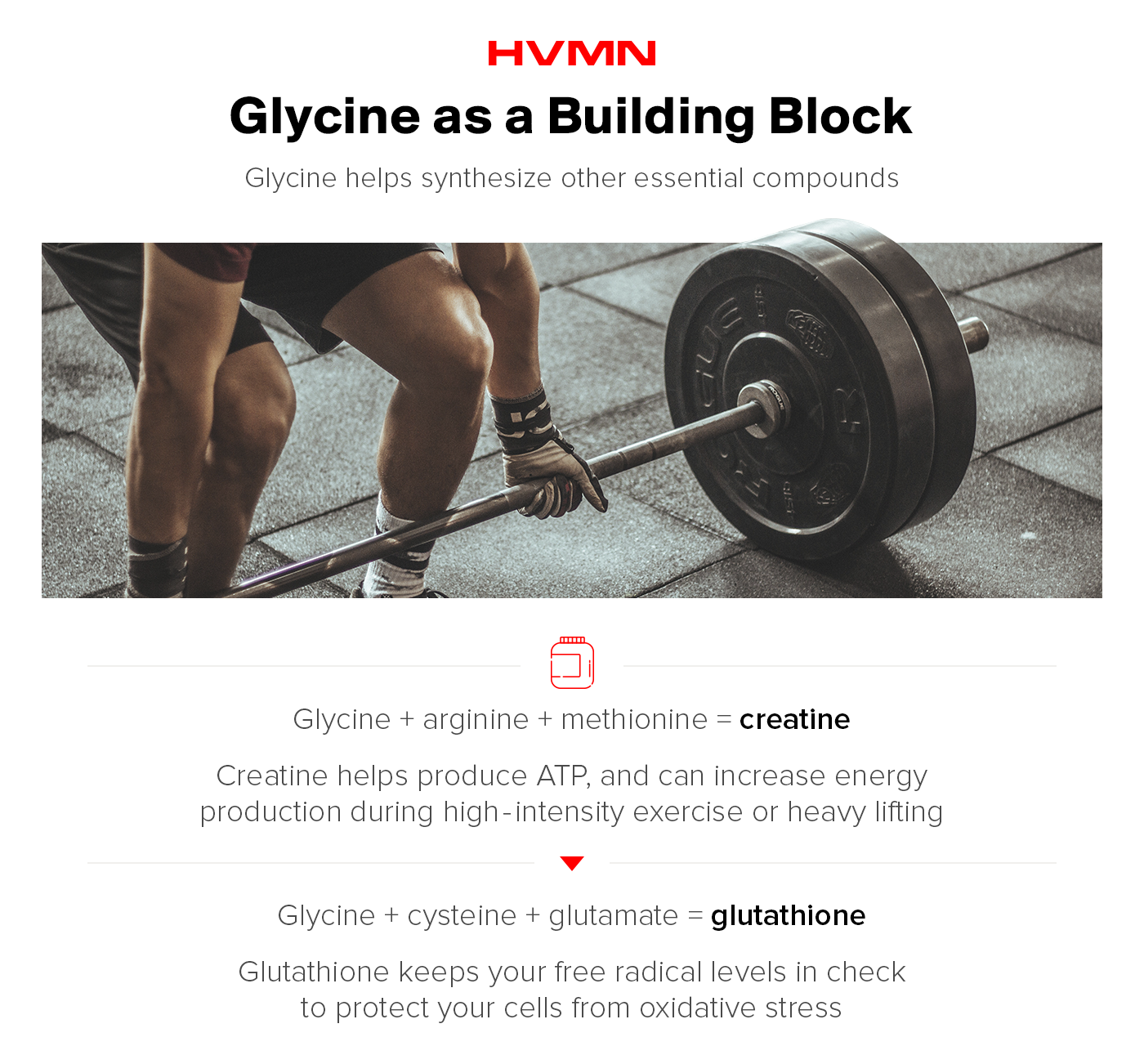 A man doing a deadlift showing how glycine is a builder for creatine.