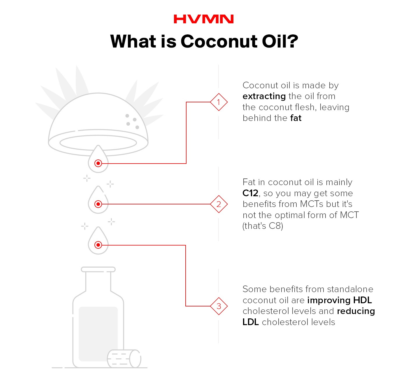 The image describes what coconut oil is and how it's extracted along with some of its benefits.,