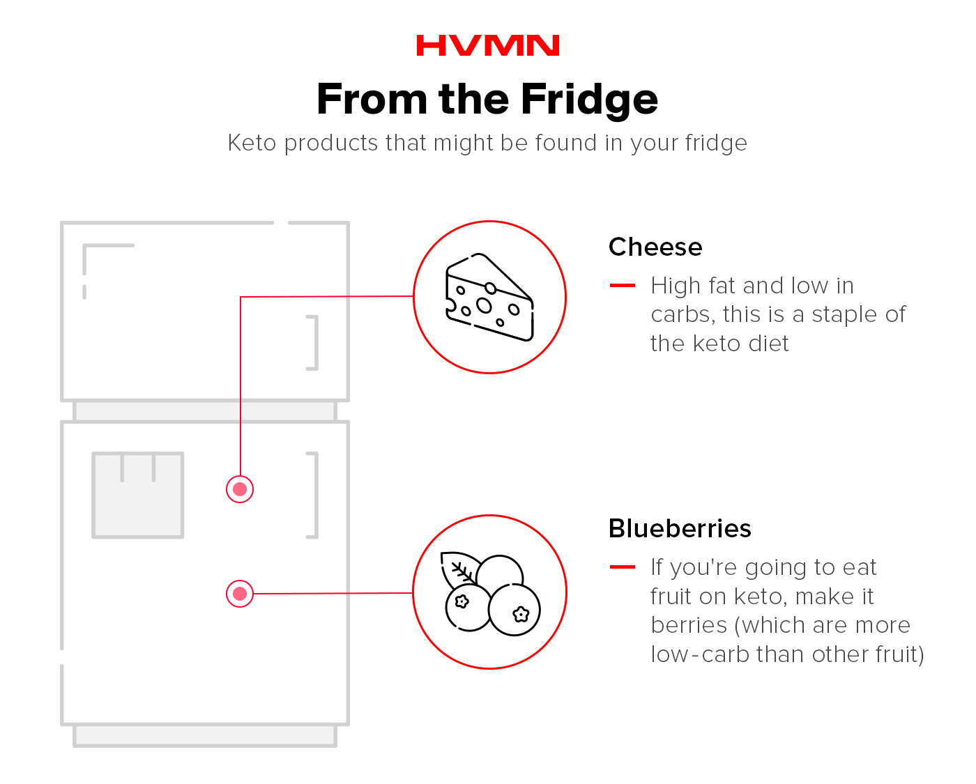 An illustration of a fridge, with cheese and blueberries, showing which keto items you might find in your fridge
